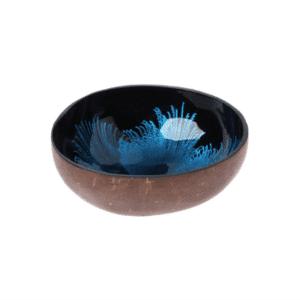 bol en bois de noix de coco peint